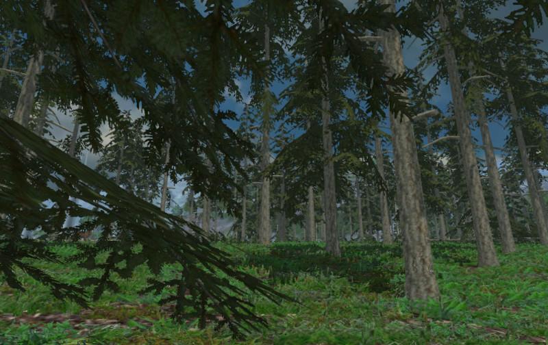 Forest Sound V 1.0